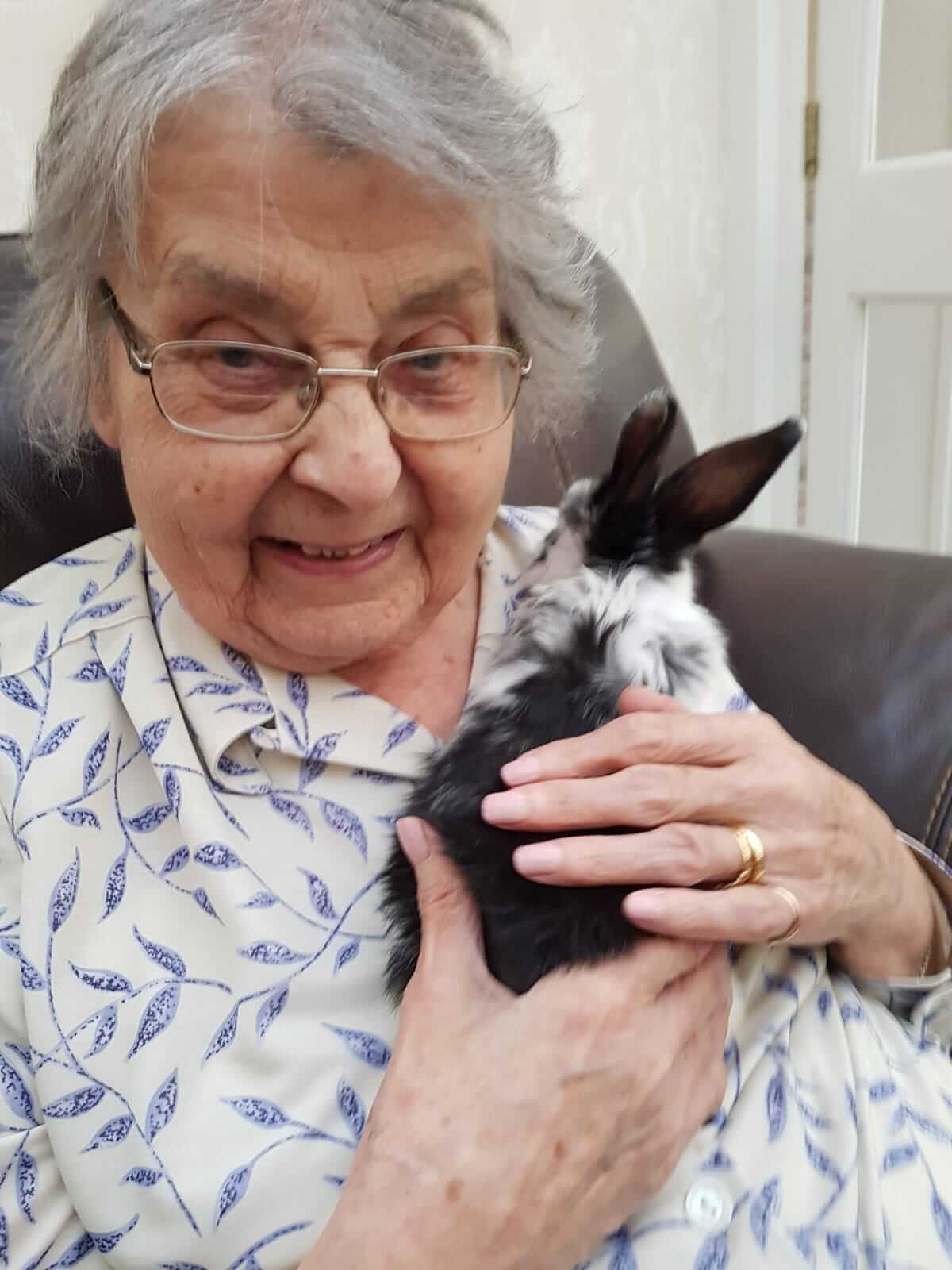 pets care too in care home in Stansted